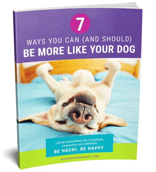 7 Ways You Can (And Should) Be More Like Your Dog